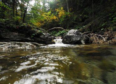 płynący potok w górach, zdjęcie naszego czytelnika