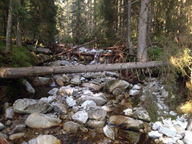 droga do doliny 5 stawów, po drodze mały wodospad
