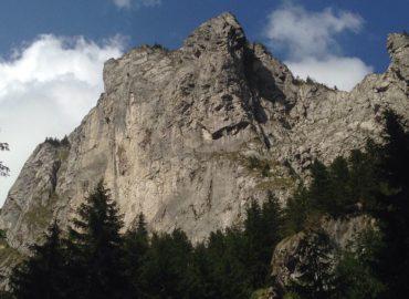 wzgórze nad szlakiem do Smerczyńskiego Stawu
