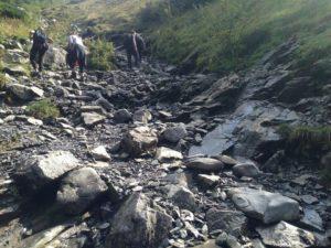kamienny szlak w gore